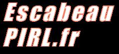 http://www.escabeau-pirl.fr/