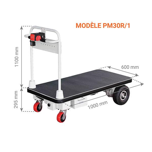 chariot manutention motorisee dimensions 300kg