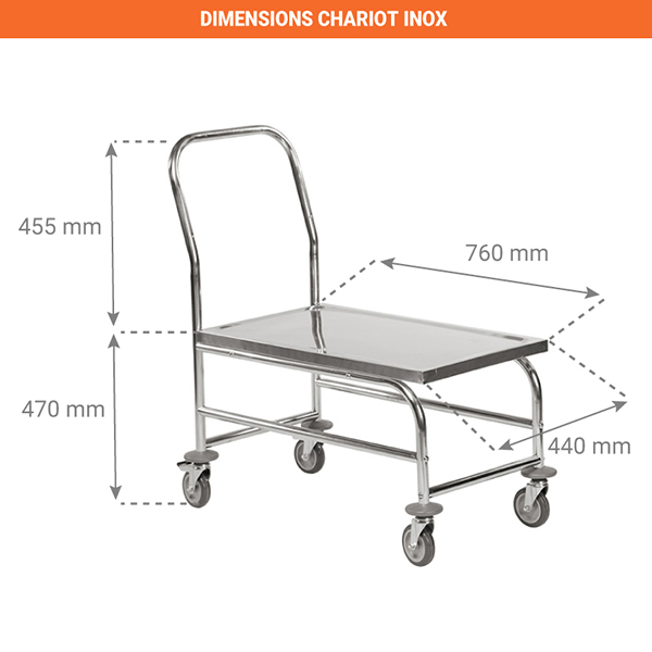 dimensions chariot 805009759