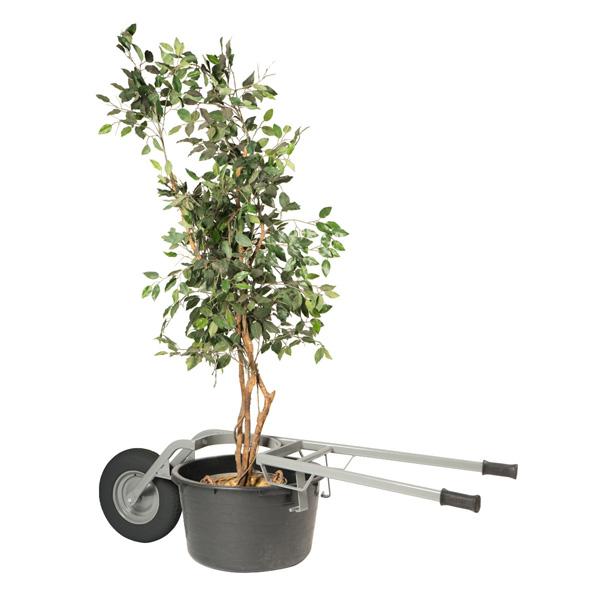 brouette transport plantes