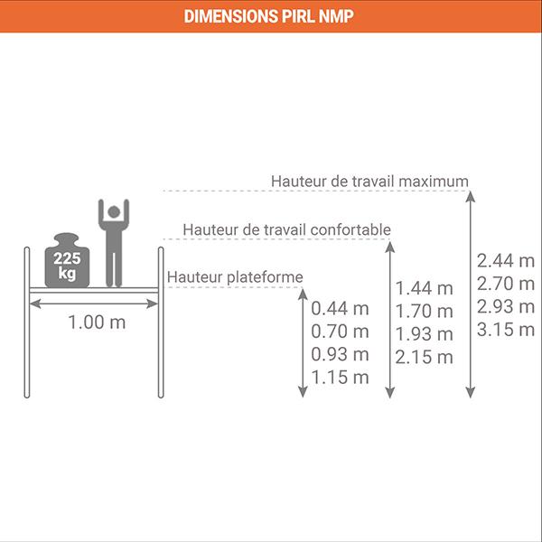 schema PIRL NMP