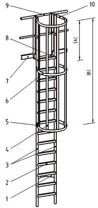 composition de l'échelle crinoline