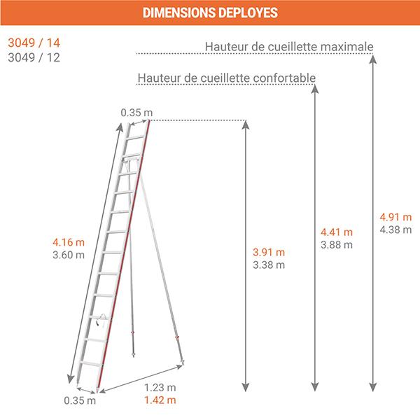 dimensions echelle fruitiere 3049