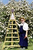 homme avec une échelle fruitière
