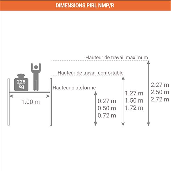 schema PIRL NMPR