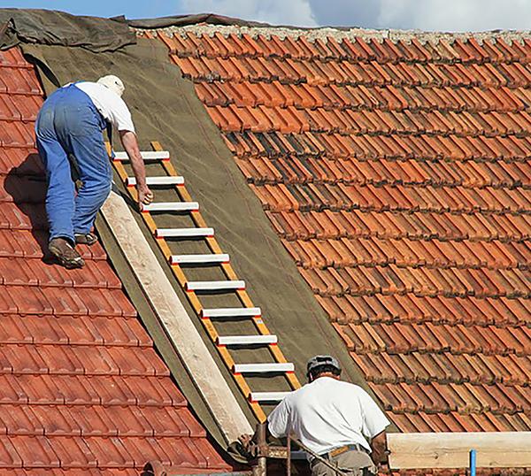 Dach Leiter 4135