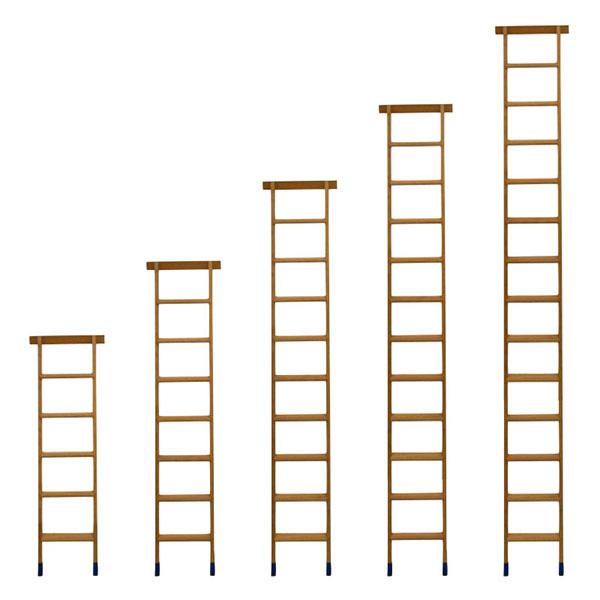 Produktpalette Stufenleiter BSMAG FR