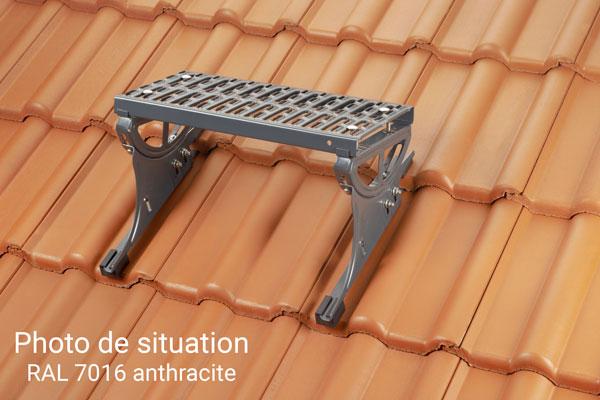 marchepied toiture 8930