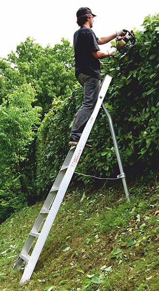 scala agricola punta sostegno telescopica